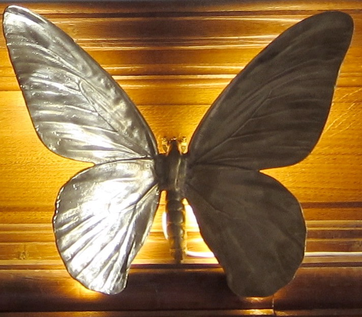 Applique Papillon d'or (Bronze)